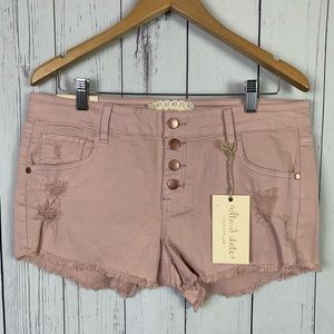 NWT Altar'd State | vintage misty rose shorts